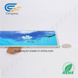 Ckingway 10.1 High Resolutions LCD Wide Screen Display colorido Display TFT LCD transparente