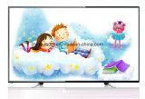 """Produit 2016 d'approvisionnement d'usine nouveau TV 32D08b LED TV 32 """" Digital TV DVB-T/DVB-T2/DVB-S"""