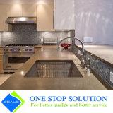 L'impiallacciatura e Paniting grigio rifiniscono la mobilia modulare della cucina dei Governi dell'armadietto (ZY 1138)