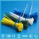 O UL RoHS passou a fabricante de nylon de travamento automático da cinta plástica preços baratos
