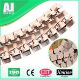 Perforierungs-Plastikspitzenkettenlatte-Förderwerk-Kette (Har880TA)