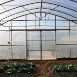 Serre van de Spanwijdte van de Landbouw van lage Kosten de Enige voor Verkoop