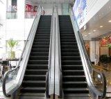 Da etapa automática comercial do passageiro do lugar público escada rolante residencial