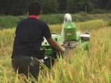 mini moissonneuse de riz du cartel 10HP pour agricole/ferme