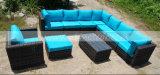 Osier de jardin/sofa extérieurs sectionnels de rotin réglé (MTC-189)