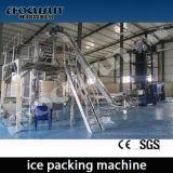 얼음 포장업자와 가진 20 톤 또는 일 관 제빙기