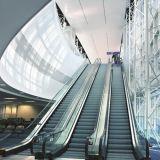 Im Freienrolltreppe mit gute Qualitätskonkurrenzfähigem Preis
