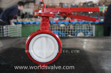 Shaft dobro Industrial Demco Control Valve com ISO Approved do CE (D7A1X-10/16)