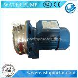 Pomp qdp-h Met duikvermogen die voor het Tuinieren met Schoon Water wordt gebruikt