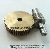 Fijar las piezas gusano de la transmisión y el engranaje de gusano M=1