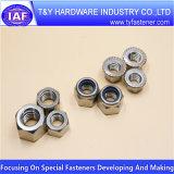 Écrous de blocage en nylon Hex de l'acier inoxydable A2 A4 DIN 985/DIN 982