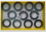 Trisun Tsdgs-J01 건조한 가스 물개는 죤 기중기 2800e를 대체한다
