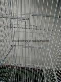 Grande cage de fil de Chambre d'animal familier de cage en métal de cage de perroquet de cage d'oiseau