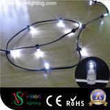Lumière de chaîne de caractères de la décoration DEL de l'arbre IP68