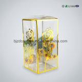 Foldable 방수 작은 직사각형 플라스틱 투명한 상자