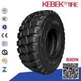 China radiales comerciales Neumáticos de coches 185 / 65R15