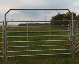 Горячий строб фермы просто конструкции сбывания легкий фикчированный
