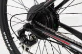 Epacの&ndashが付いている道のバイクを離れて; 電気で力はサイクルの標準を助けた