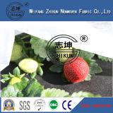 Protezione Anti-UV nel tessuto non tessuto del polipropilene dei pp per il coperchio di agricoltura