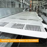 Système en acier galvanisé de augmenter de poulet de bâti de H