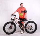 Колеса Bike тучной вилки подвеса Bike тучные