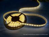 休日の装飾のための5050 60 LEDs/M LEDテープ