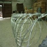 De gegalvaniseerde Omheining van het Netwerk van de Draad van het Scheermes (cbt-65)