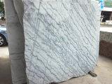 شعبيّة جميل رخاميّ حجارة سعر لكلّ عداد مربّعة رخام بيضاء مع عرق أسود