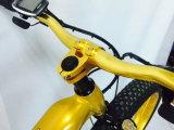 750W 48V/13ah를 가진 힘 먼지 눈 뚱뚱한 전기 E 자전거