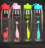 De kleurrijke Creatieve Kop van de Gift van de Fles van het Glas van de Fles van de Sport Draagbare