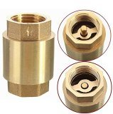 Válvula de bronze do filtro com núcleo plástico ou núcleo do bronze
