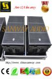 12A Aero Single 12 '' Professional Line Array Speaker Price, Active Line Array Speakers