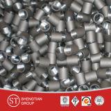 ステンレス鋼の可鍛性鋳鉄のニップル