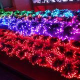 Stringa flessibile del pixel LED SMD5050 5mm LED di Ws2811 12V
