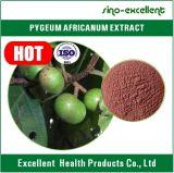 Het Uittreksel van Africana/het Uittreksel van Pygeum Africanum (Totale sterol 2.5% & 13%)