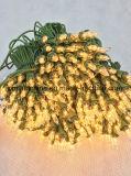 Incandenscent党装飾のための小型ストリングライトおよび高品質パフォーマンス(IN100)のクリスマスツリー