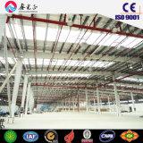 Taller de la estructura de acero del bajo costo/almacén prefabricados (SSWW-16079)