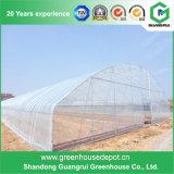 정원 설치를 위한 HDPE 플라스틱 덮개에 의하여 이용되는 작은 온실
