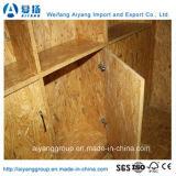 Pappel rohes Mateiral OSB für Aufbau-/Möbel-/Verpackungs-Grad