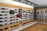 Soporte de visualización de la tienda al por menor de los zapatos de las mujeres