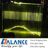 Lichte Gordijn van de Waterval van de vezel het Optische (wf-002)
