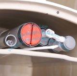 Toilettes de l'eau d'économie de toilette de carte de travail de Siphonic de salle de bains avec le bidet intrinsèque