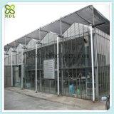 녹색 집이 프레임 모듈 건물에 의하여 설치한다