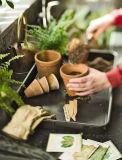 防水テラスの庭の反スリップの記憶の皿