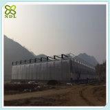 Casa verde da produção comercial da folha do policarbonato