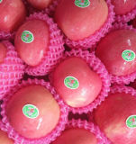 Grau A125-150 Fresh Red FUJI Apple