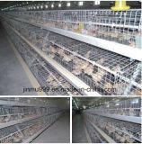 Automatisches Geflügelfarm-Gerät mit Fertighaus