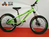 """bicicleta da montanha de 20 """" MTB com velocidade da engrenagem 7 de Shimano"""