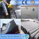 Trazadores de líneas de la charca de Geomembrane del HDPE del precio bajo 2m m con la certificación del Ce