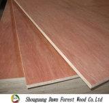 madera contrachapada de 12m m Comercial